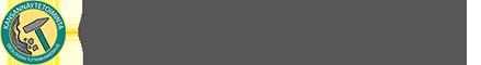 Kivinäyte Logo
